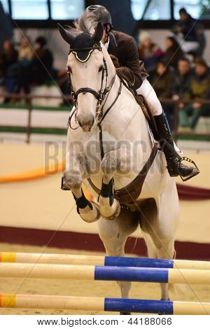 KAPOSVAR, HUNGARY - MARCH 24: Balazs Sandor jumps with his horse (Zengo) on the Masters Tournament International Jumping Competition, March 24, 2013 in Kaposvar, Hungary