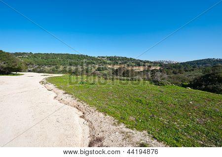 Druze Town