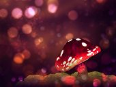 stock photo of magical-mushroom  - Big mushroom on glowing purple fantasy bokeh background - JPG