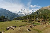stock photo of karakoram  - Nanga Parbat and Fairy Meadows in Northern Pakistan - JPG