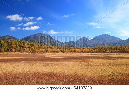 Odashiro Plateau Of Autumn