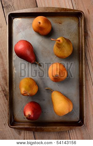 A group of Bosc and Red Pears on a baking sheet. Overhead view, vertical format. The baking sheet is sitting on a rustic wooden table.