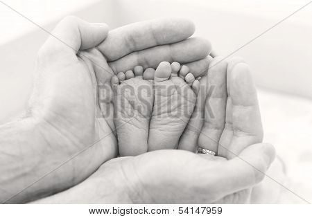 Feet Newborn Baby In Father's Hands