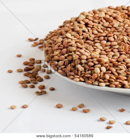 Lentil on a light background