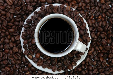 Cup Of Coffee On a Coffee Beans