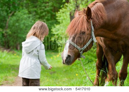 Horse And Little Girl.