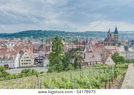 Esslingen Am Neckar Views From The Castle, Germany