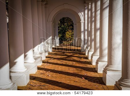 Virginia Columns