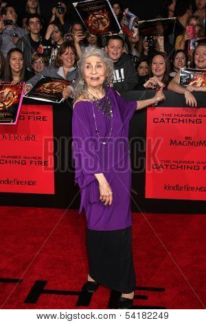 LOS ANGELES - NOV 18:  Lynn Cohen at the The Hunger Games:  Catching Fire Premiere at Nokia Theater on November 18, 2013 in Los Angeles, CA