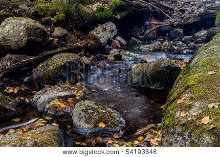 Autumn Creak With Leavs And Slow Water