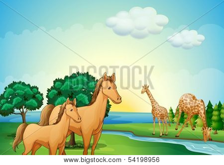 Illustration of the horses and giraffe near the river