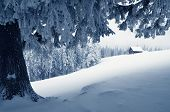 pic of house woods  - Winter landscape with snow in a mountain valley - JPG