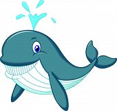 pic of gushing  - vector illustration of Cute whale cartoon isolated on white background - JPG
