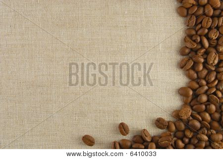 Seed Of Coffee