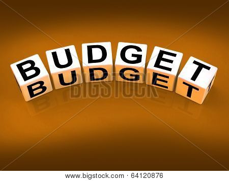 Budget Blocks Show Financial Planning And Accounting