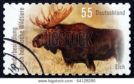 Postage Stamp Germany 2012 Moose, Alces Alces