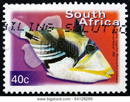 Postage Stamp South Africa 2000 Blackbar Triggerfish, Marine Fis