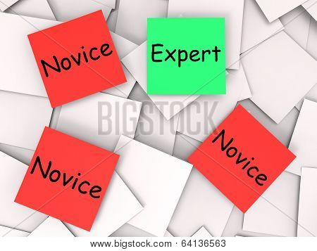 Expert Novice Notes Mean Professional Or Learner