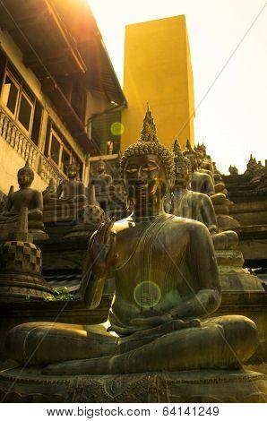 Buddha statues in sunset lights in Gangaramaya temple, Colombo