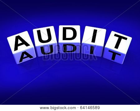 Audit Blocks Refer To Investigation Examination And Scrutiny