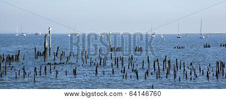 Jersey Sailboats