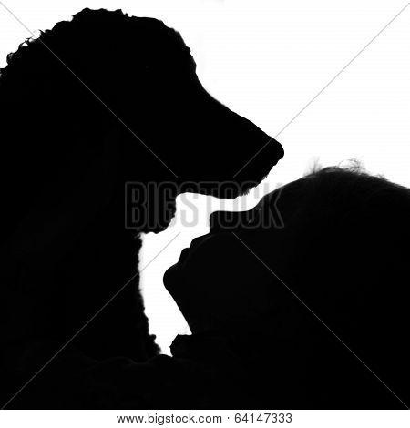 Puppy Love Silhouette