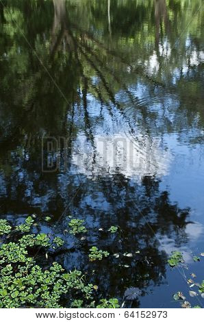 Blue Sky Reflection On Water, Selective Focus