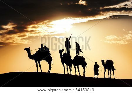 Desert Local Walks With Camel Through Thar Desert