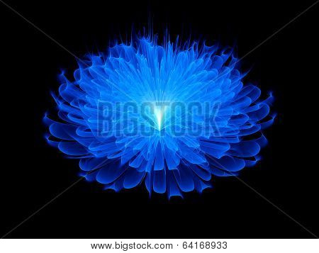 Blue Space Flower Background