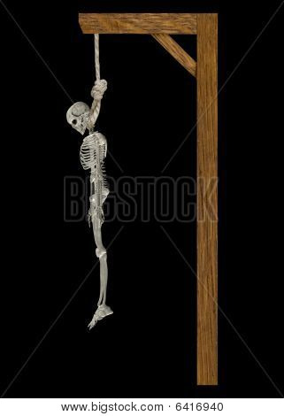 Hanging Skeleton