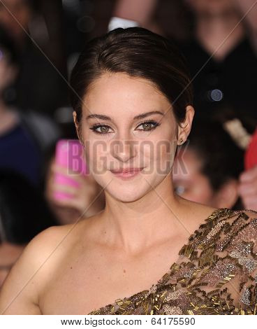 LOS ANGELES - MAR 18:  Shailene Woodley arrives to the 'Divergent' Los Angeles Premiere  on March 18, 2014 in Westwood, CA