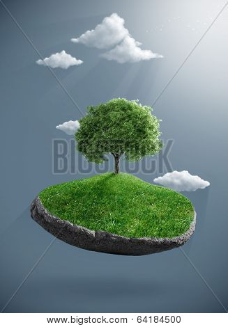 Tree On Suspended Rock