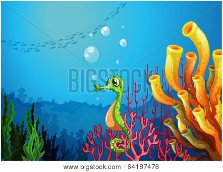 Illustration of a seahorse near the coral reefs