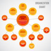 pic of hierarchy  - Organizational chart infographic business bubbles circle work process vector illustration - JPG