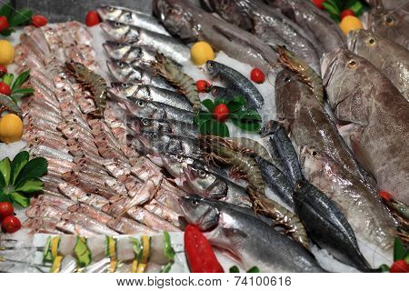 Raw Fishes On The Grocery Store Counter