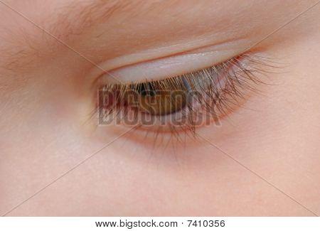 closeup view of eyelashes