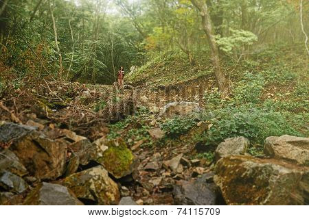 Hiker Woman In Forest