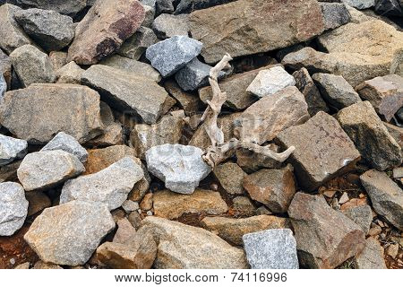 Granite Boulders And Driftwood Pile