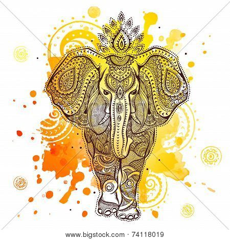 vector elephant illustration with watercolor splash