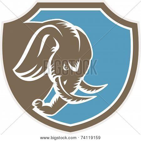 Angry Elephant Head Side Shield Retro