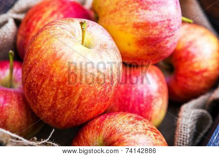 Fresh Red Apples Closeup