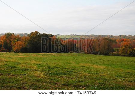 Grassy Country Field With Fall Foliage In The Distance