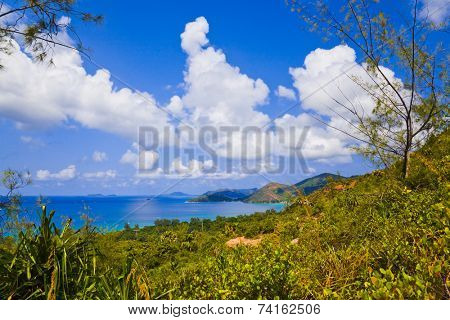 Landscape of island Praslin, Seychelles - vacation background