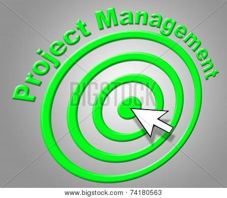 Project Management Shows Enterprise Projects And Administration
