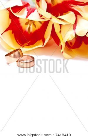 Tulips And Rings