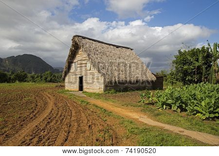 Barn for air-curing of tobacco