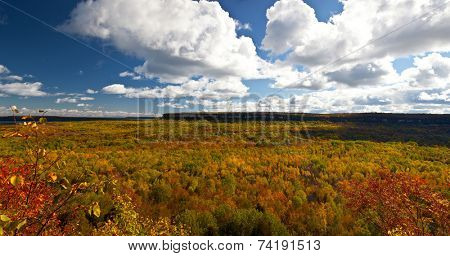 Cape Croker Cliff Autumn Fall Forest Trees Panoramic Landscape