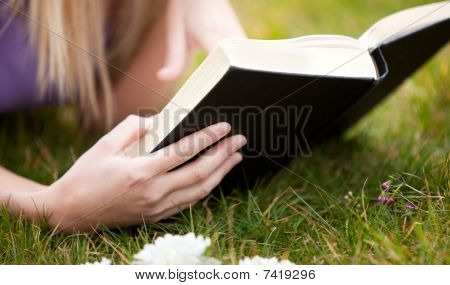 Close-up Of A Woman Reading A Book In A Park
