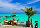 stock photo of kuramathi  - Cafe on the beach - JPG