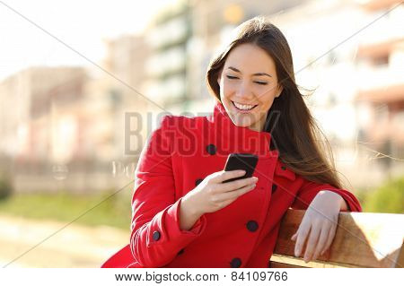 Girl Texting On The Smart Phone Sitting In A Park